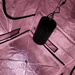 COB LED Grow Lights in grow tent