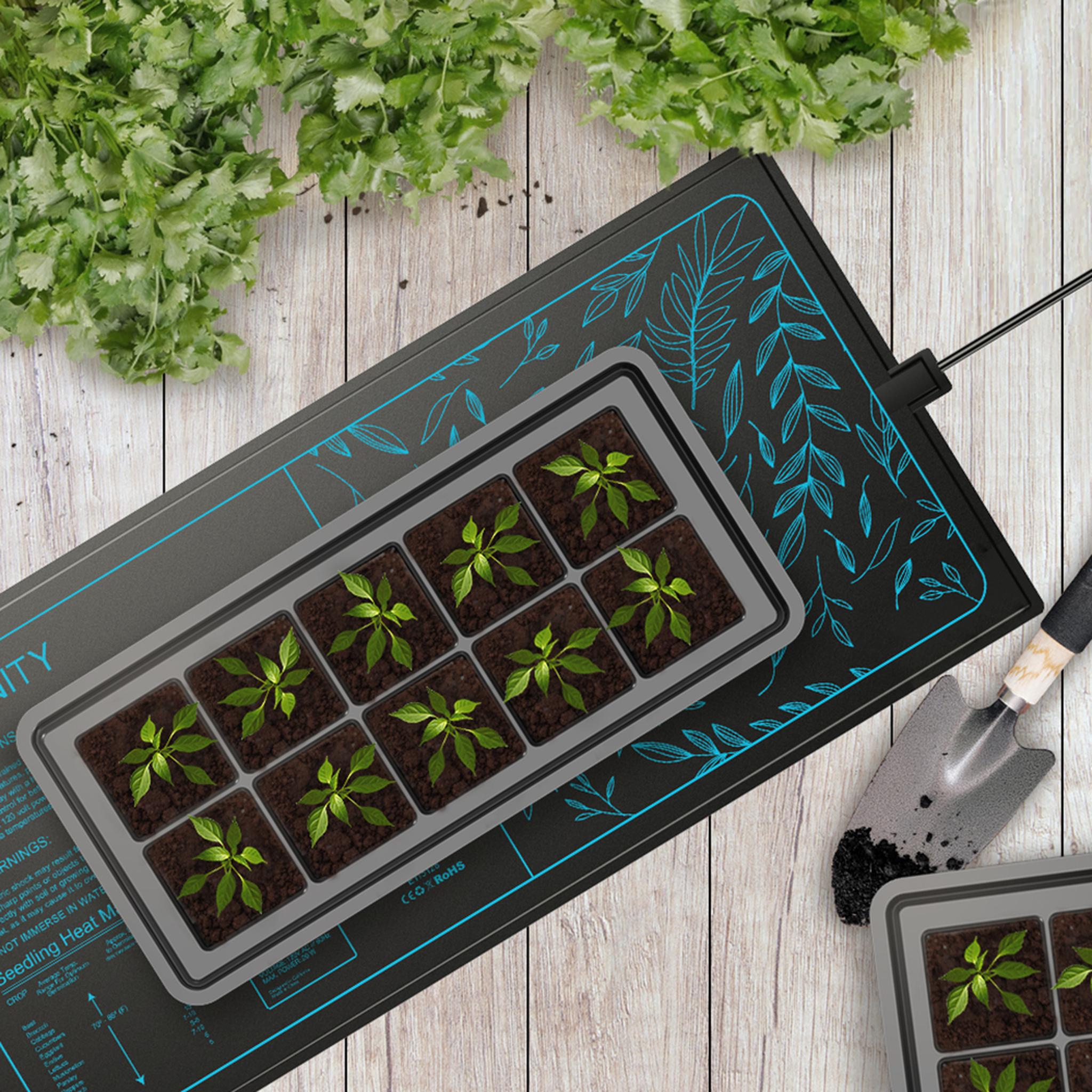 Suncore Heat Mat growing seedlings